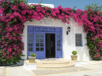 The entrance door of the hotel, which is framed by a purple bougainvillea